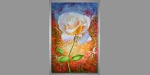 Biela ruža, maľovaný obraz ručne