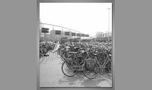 Bicykle-Holandsko, obraz tlačený