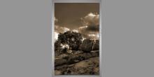 Obraz digitálne tlačený, V prírode